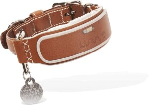 link akc smart dog collar for pitbulls
