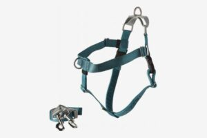2 hounds design freedom no pull harness and leash
