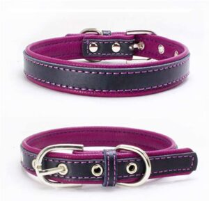 bonawen leather padded best collar for doberman