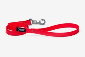 stunt puppy dry best dog collar leashes